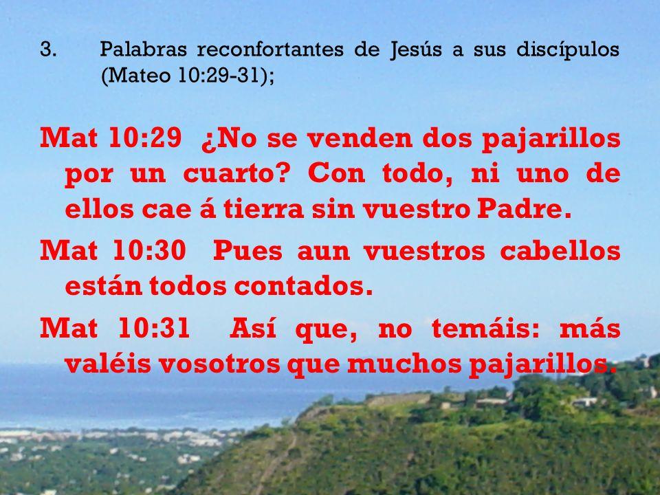 3.Palabras reconfortantes de Jesús a sus discípulos (Mateo 10:29-31); Mat 10:29 ¿No se venden dos pajarillos por un cuarto.