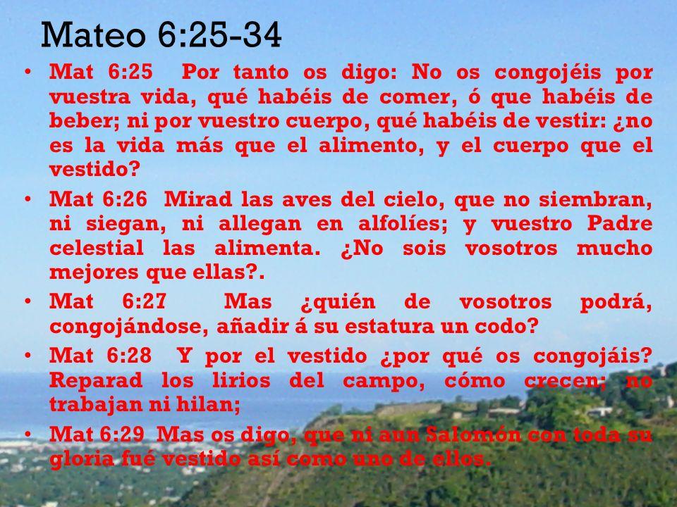 Mateo 6:25-34 Mat 6:25 Por tanto os digo: No os congojéis por vuestra vida, qué habéis de comer, ó que habéis de beber; ni por vuestro cuerpo, qué habéis de vestir: ¿no es la vida más que el alimento, y el cuerpo que el vestido.