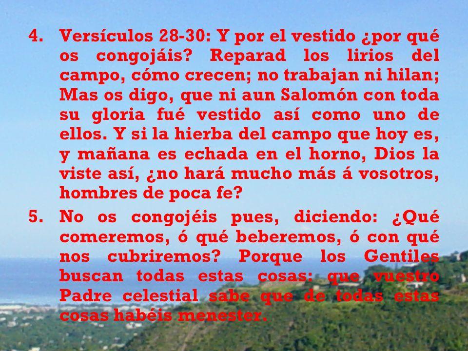 4.Versículos 28-30: Y por el vestido ¿por qué os congojáis? Reparad los lirios del campo, cómo crecen; no trabajan ni hilan; Mas os digo, que ni aun S