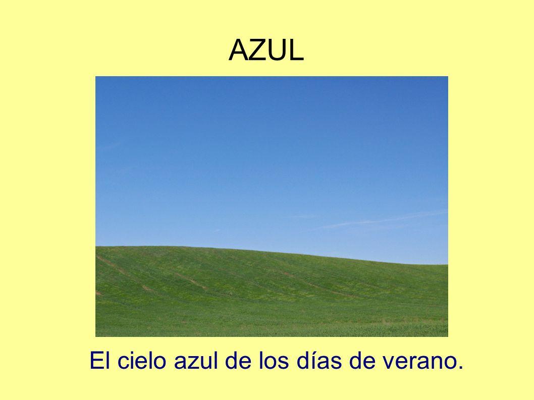 AZUL El cielo azul de los días de verano.