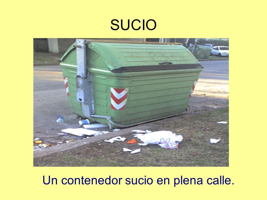 SUCIO Un contenedor sucio en plena calle.