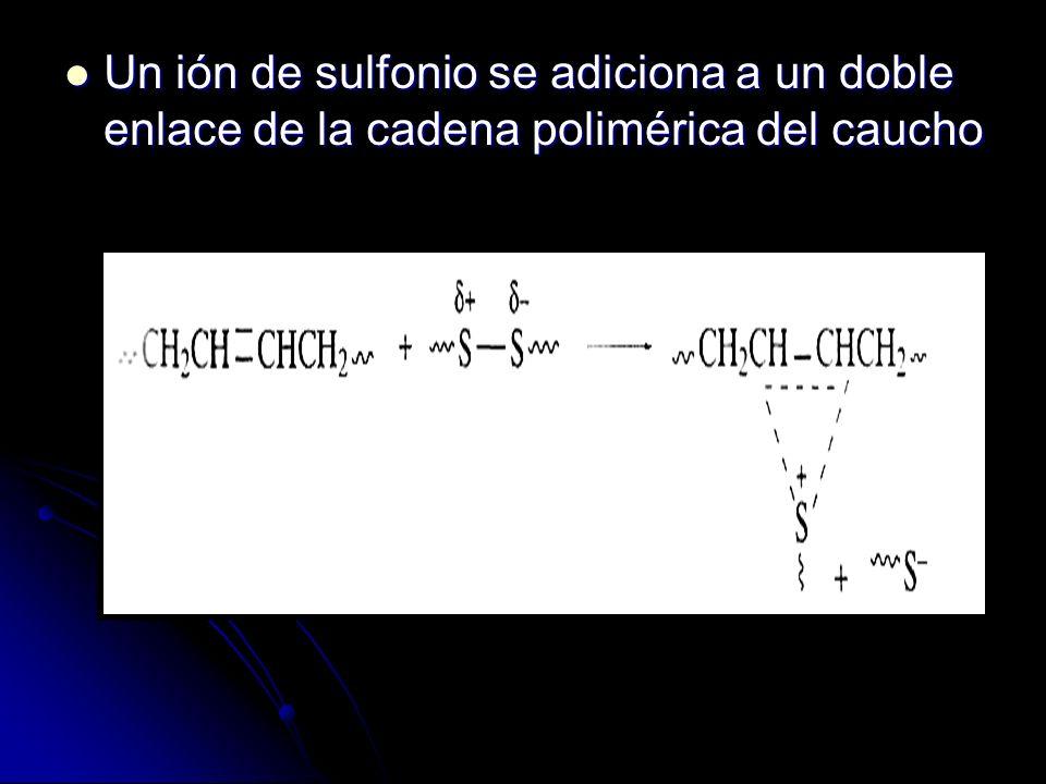 Un ión de sulfonio se adiciona a un doble enlace de la cadena polimérica del caucho Un ión de sulfonio se adiciona a un doble enlace de la cadena poli