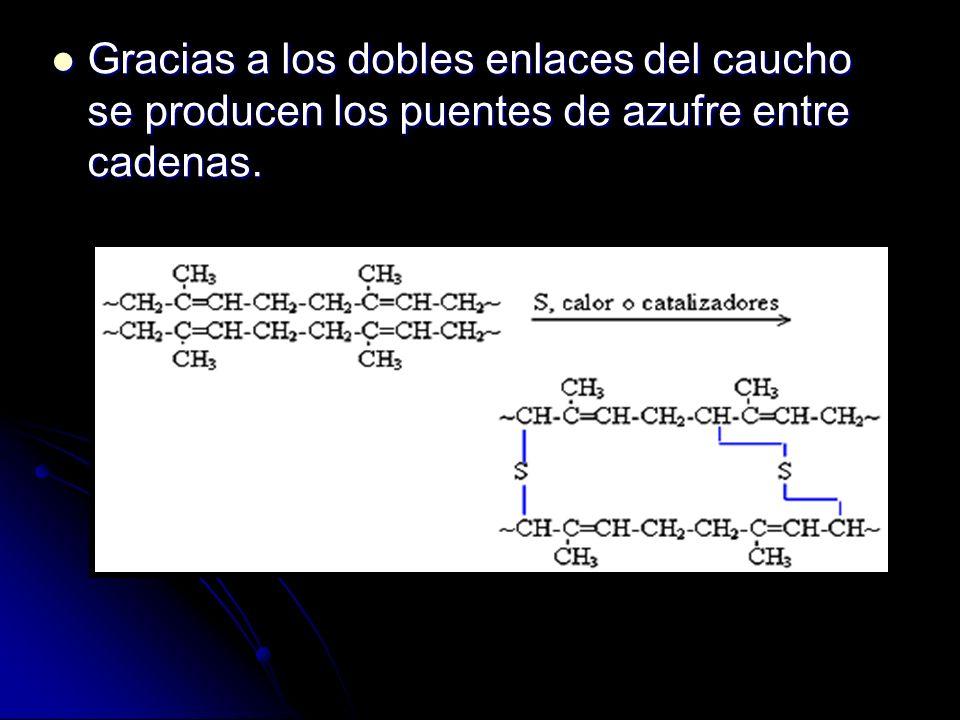 Gracias a los dobles enlaces del caucho se producen los puentes de azufre entre cadenas. Gracias a los dobles enlaces del caucho se producen los puent