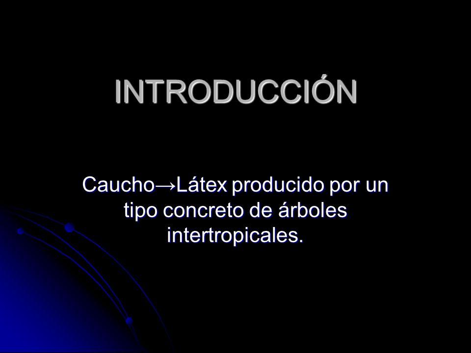 INTRODUCCIÓN CauchoLátex producido por un tipo concreto de árboles intertropicales.