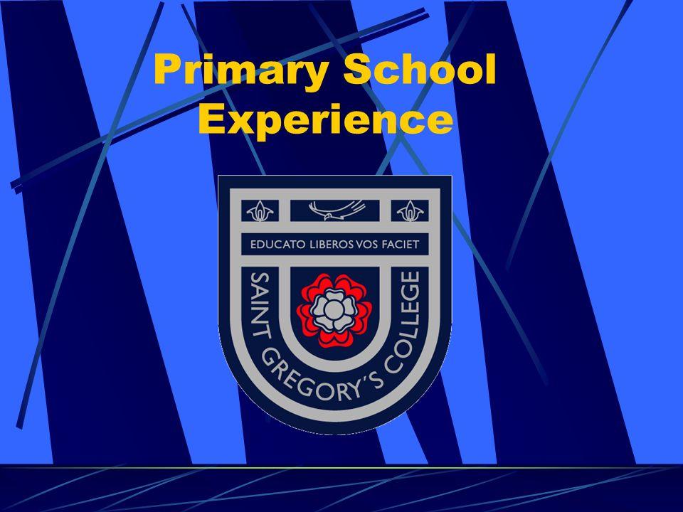 Primary School Experience