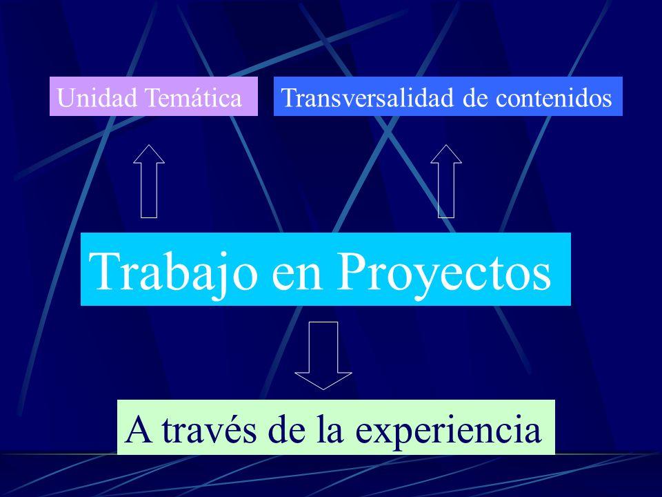 Unidad TemáticaTransversalidad de contenidos Trabajo en Proyectos A través de la experiencia