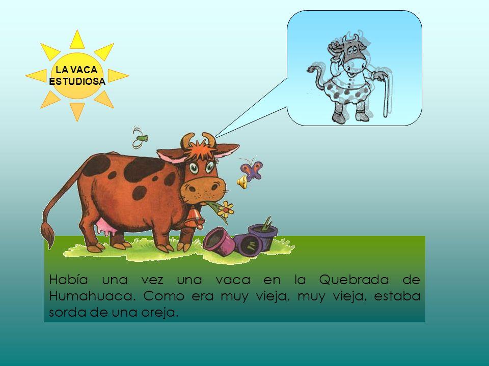 Según la maestra ¿Por qué no podía estudiar la vaca.