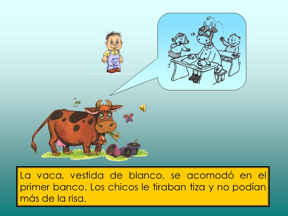 La vaca, vestida de blanco, se acomodó en el primer banco.
