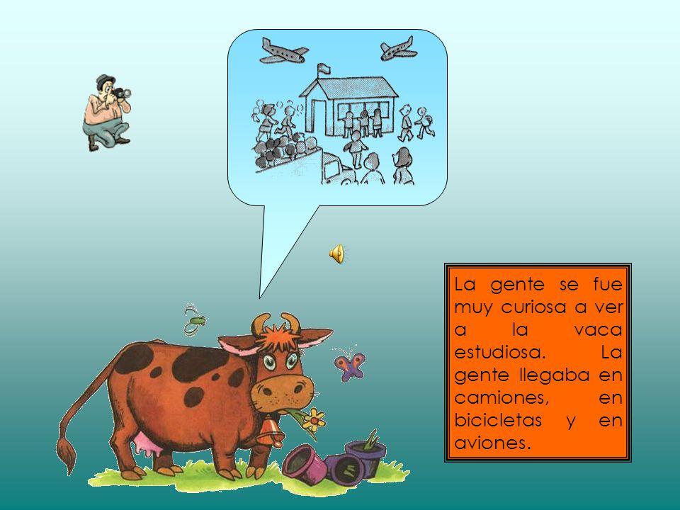 La gente se fue muy curiosa a ver a la vaca estudiosa.