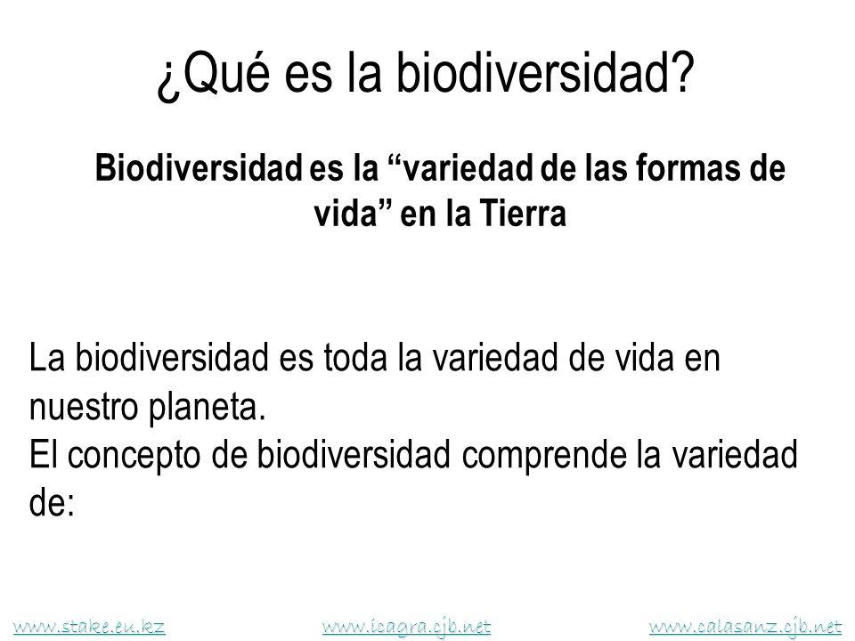 ¿Qué es la biodiversidad? Biodiversidad es la variedad de las formas de vida en la Tierra www.stake.eu.kzwww.stake.eu.kz www.icagra.cjb.net www.calasa