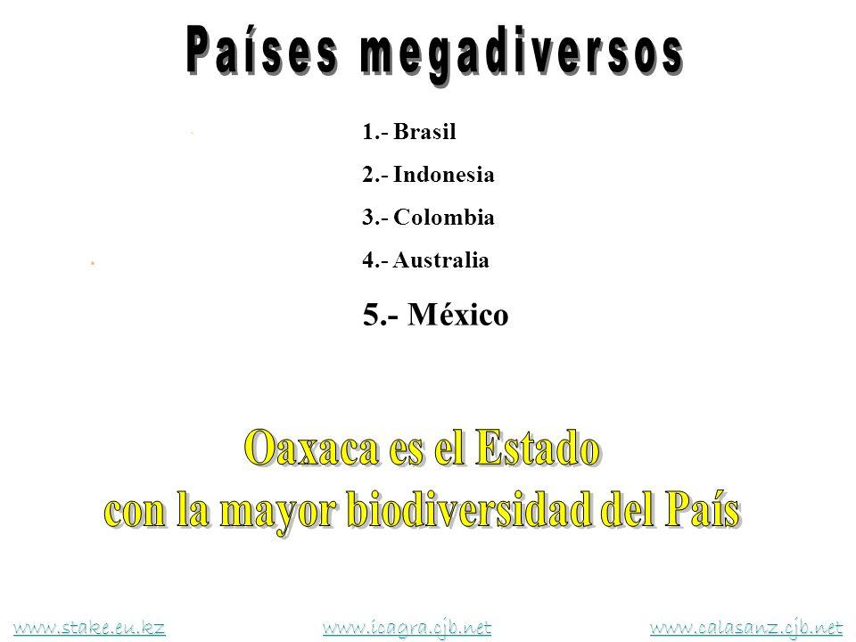 1.- Brasil 2.- Indonesia 3.- Colombia 4.- Australia 5.- México www.stake.eu.kzwww.stake.eu.kz www.icagra.cjb.net www.calasanz.cjb.net www.icagra.cjb.n