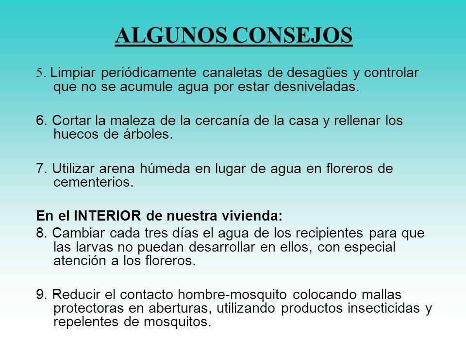 5. Limpiar periódicamente canaletas de desagües y controlar que no se acumule agua por estar desniveladas. 6. Cortar la maleza de la cercanía de la ca