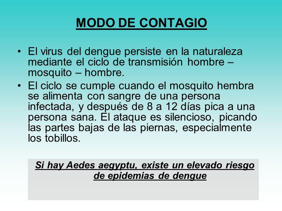 MODO DE CONTAGIO El virus del dengue persiste en la naturaleza mediante el ciclo de transmisión hombre – mosquito – hombre.