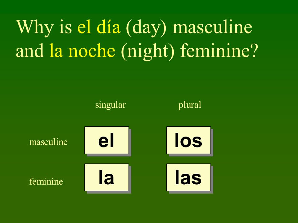 Why is el día (day) masculine and la noche (night) feminine.