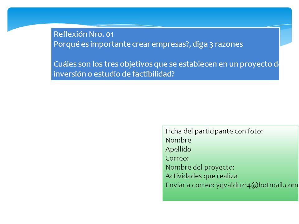 Reflexión Nro. 01 Porqué es importante crear empresas?, diga 3 razones Cuáles son los tres objetivos que se establecen en un proyecto de inversión o e