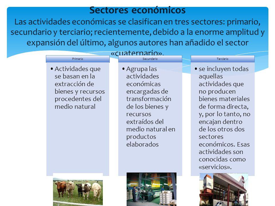Sectores económicos Las actividades económicas se clasifican en tres sectores: primario, secundario y terciario; recientemente, debido a la enorme amp
