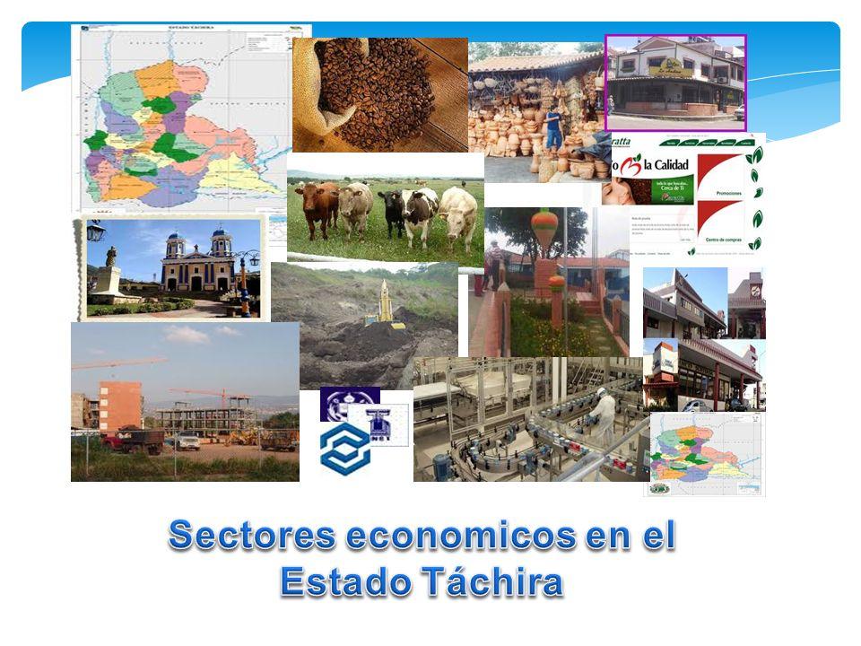 SectorFunción principal Actividad económica (describa al menos 2) Empresa de la Region (un ejemplo para cada actividad que señale) Primario Secundario Terciario Complete la siguiente tabla (de acuerdo a la actividad económica del Estado)