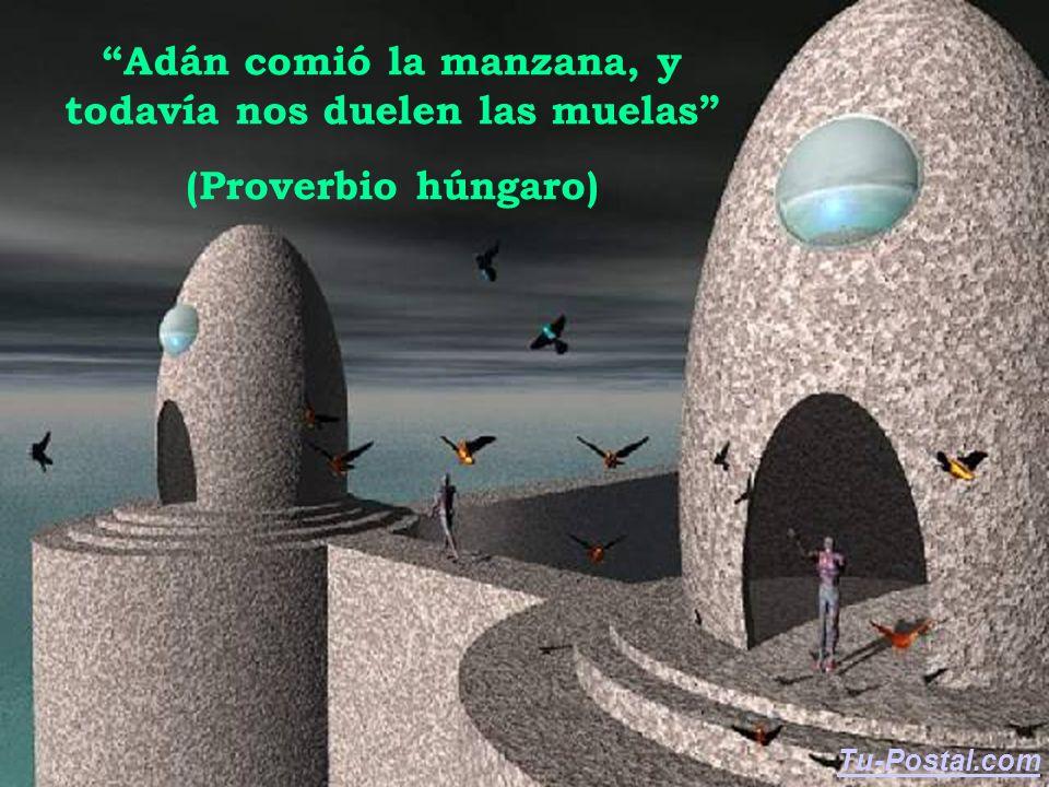 Adán comió la manzana, y todavía nos duelen las muelas (Proverbio húngaro) Tu-Postal.com