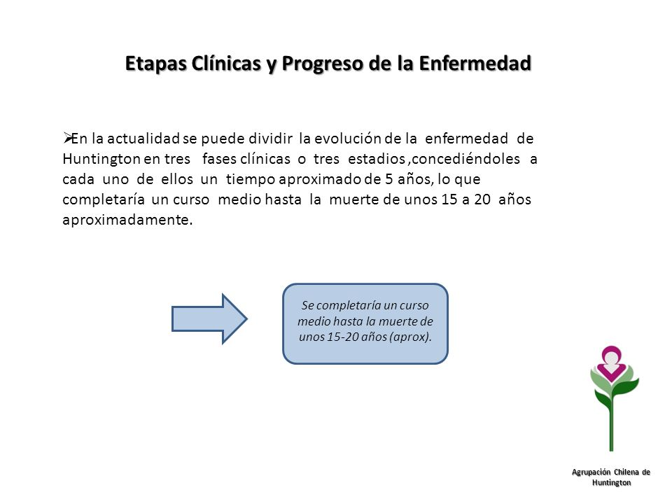Etapas Clínicas y Progreso de la Enfermedad Agrupación Chilena de Huntington En la actualidad se puede dividir la evolución de la enfermedad de Huntin