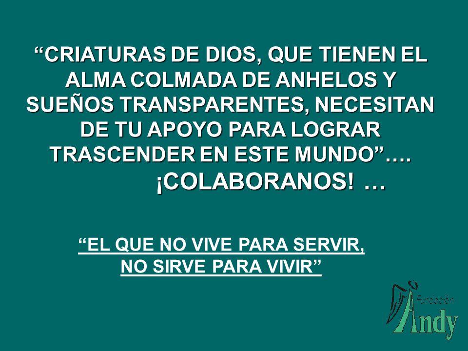 PADRINOS VINCULADOS EDITORIAL DIANA COLOMBIANA LTDA AGROCAMPO LTDA CAYETANO VARGAS- LA PERLA VITRIALAMBRE LIGIA MARCELA VARGAS CIFUENTES – LITOPERLA ALVARO TOVAR RODRIGUEZ AIRE CARIBE LTDA FERNANDO RESTREPO FORERO LOREX S.A.
