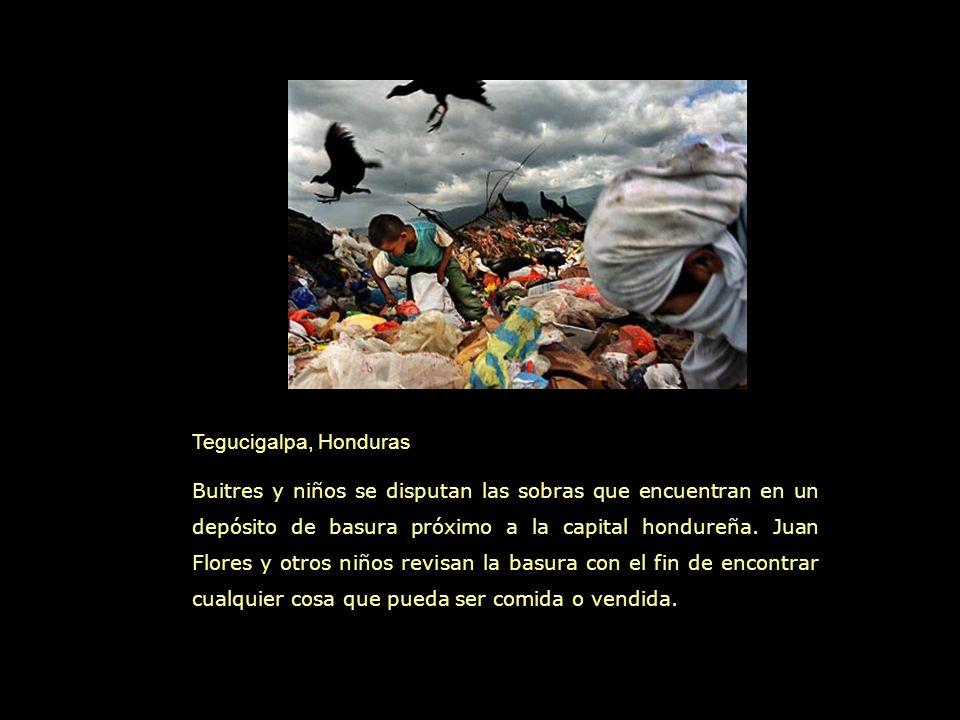 Tegucigalpa, Honduras Buitres y niños se disputan las sobras que encuentran en un depósito de basura próximo a la capital hondureña.