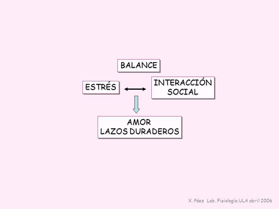 INTERACCIÓNSOCIALINTERACCIÓNSOCIAL ESTRÉSESTRÉS AMOR LAZOS DURADEROS AMOR BALANCEBALANCE