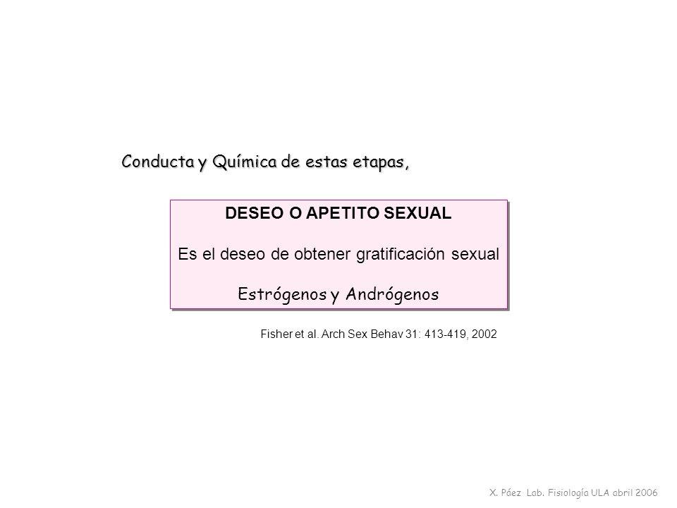 DESEO O APETITO SEXUAL Es el deseo de obtener gratificación sexual Estrógenos y Andrógenos DESEO O APETITO SEXUAL Es el deseo de obtener gratificación