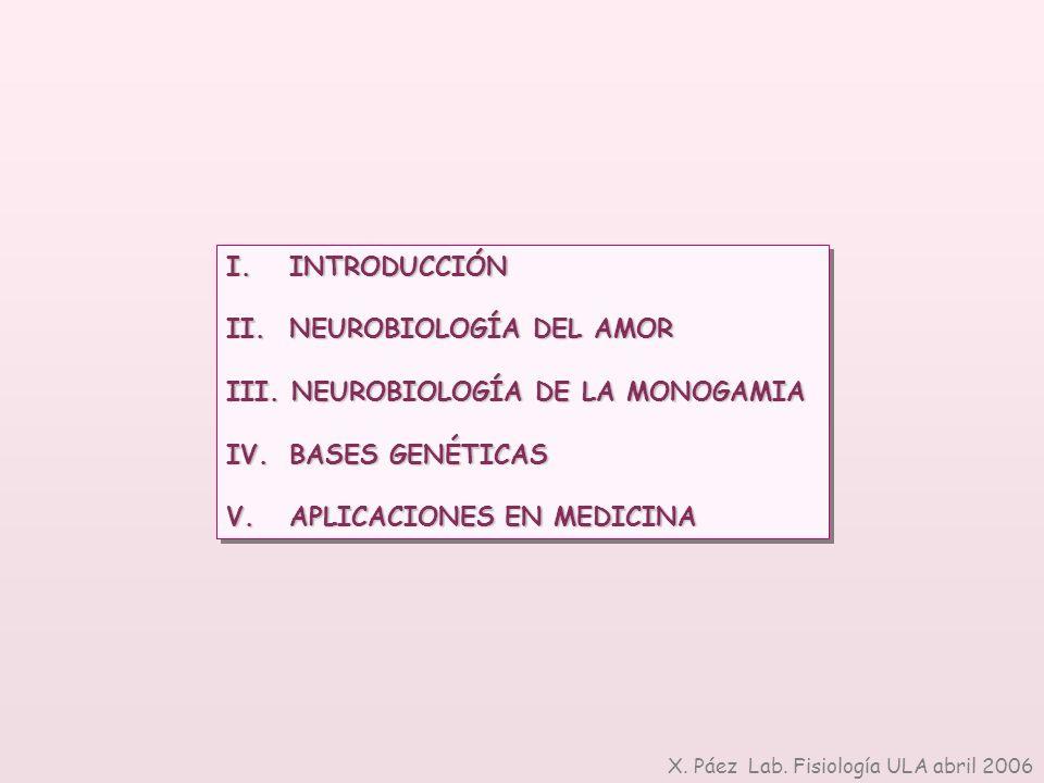 I. INTRODUCCIÓN II. NEUROBIOLOGÍA DEL AMOR III. NEUROBIOLOGÍA DE LA MONOGAMIA IV. BASES GENÉTICAS V. APLICACIONES EN MEDICINA I. INTRODUCCIÓN II. NEUR