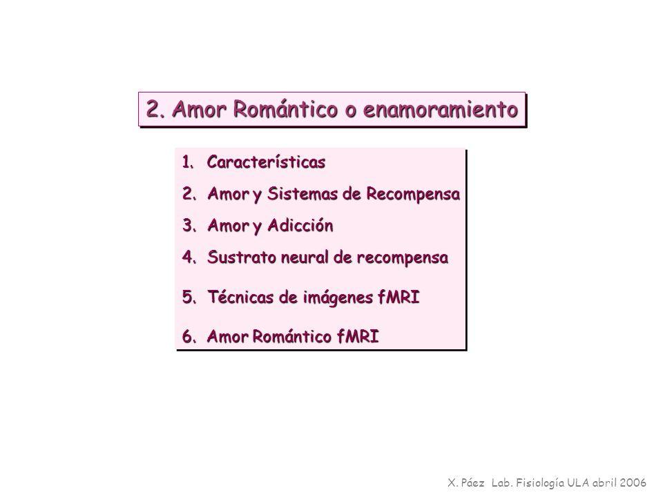 X. Páez Lab. Fisiología ULA abril 2006 2. Amor Romántico o enamoramiento 1.Características 2.Amor y Sistemas de Recompensa 3.Amor y Adicción 4.Sustrat
