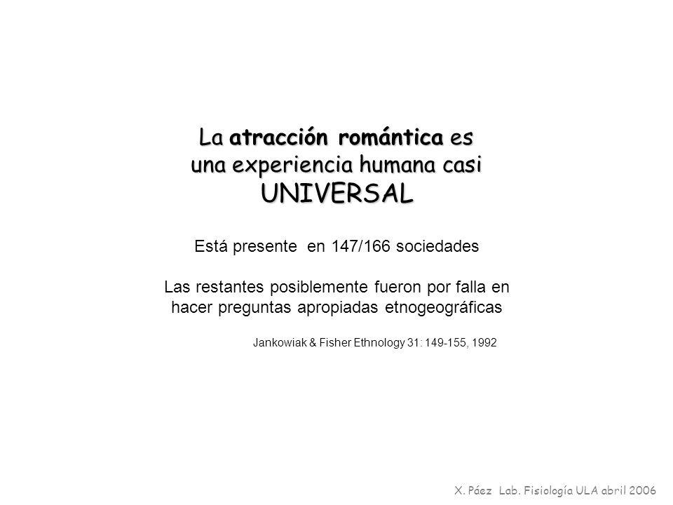 La atracción romántica es una experiencia humana casi UNIVERSAL Está presente en 147/166 sociedades Las restantes posiblemente fueron por falla en hac