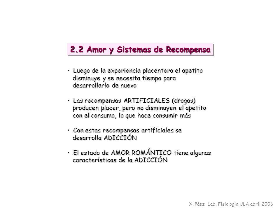 2.2 Amor y Sistemas de Recompensa X. Páez Lab. Fisiología ULA abril 2006 Luego de la experiencia placentera el apetito Luego de la experiencia placent