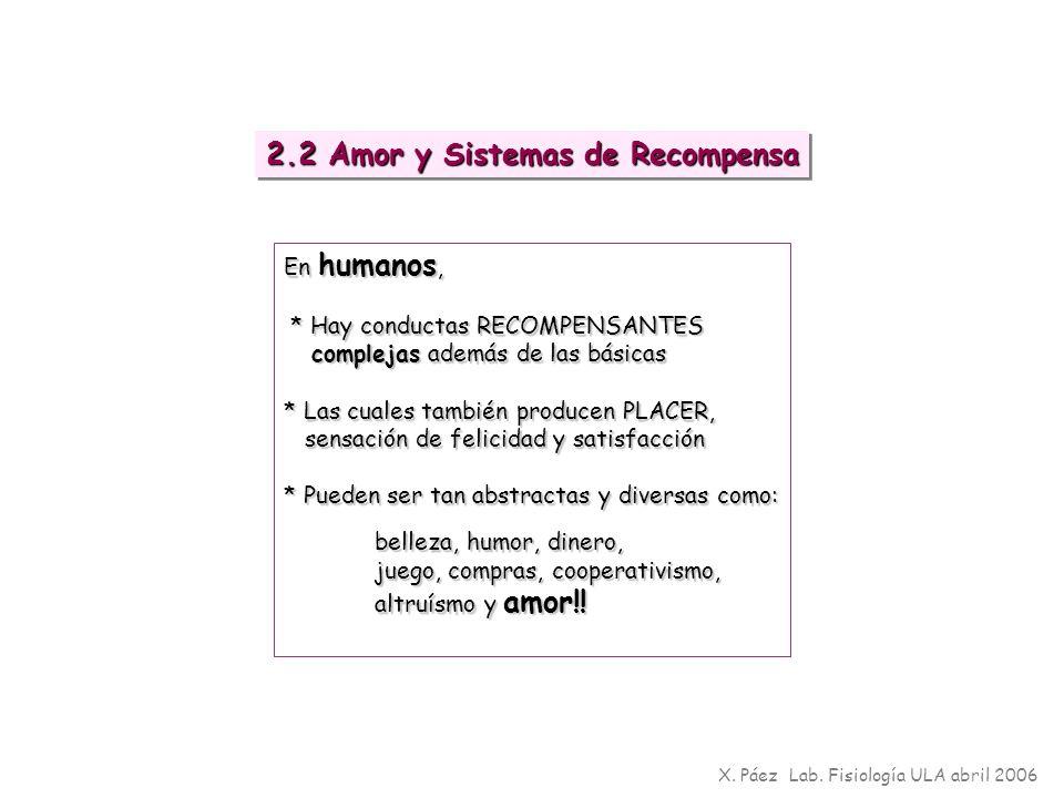 En humanos, * Hay conductas RECOMPENSANTES * Hay conductas RECOMPENSANTES complejas además de las básicas complejas además de las básicas * Las cuales