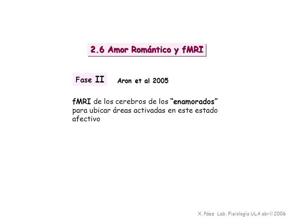 fMRI de los cerebros de los enamorados para ubicar áreas activadas en este estado afectivo X. Páez Lab. Fisiología ULA abril 2006 2.6 Amor Romántico y