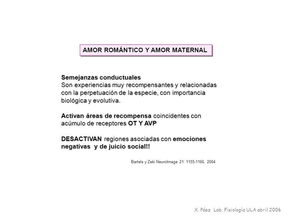 X. Páez Lab. Fisiología ULA abril 2006 Semejanzas conductuales Son experiencias muy recompensantes y relacionadas con la perpetuación de la especie, c