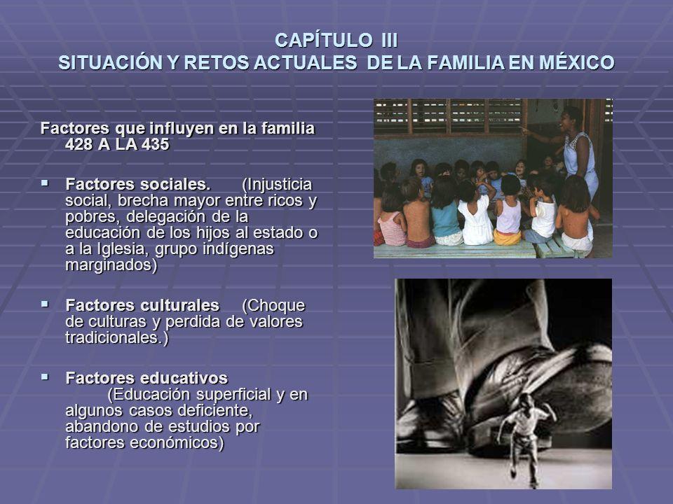 CAPÍTULO III SITUACIÓN Y RETOS ACTUALES DE LA FAMILIA EN MÉXICO Factores que influyen en la familia 428 A LA 435 Factores sociales.