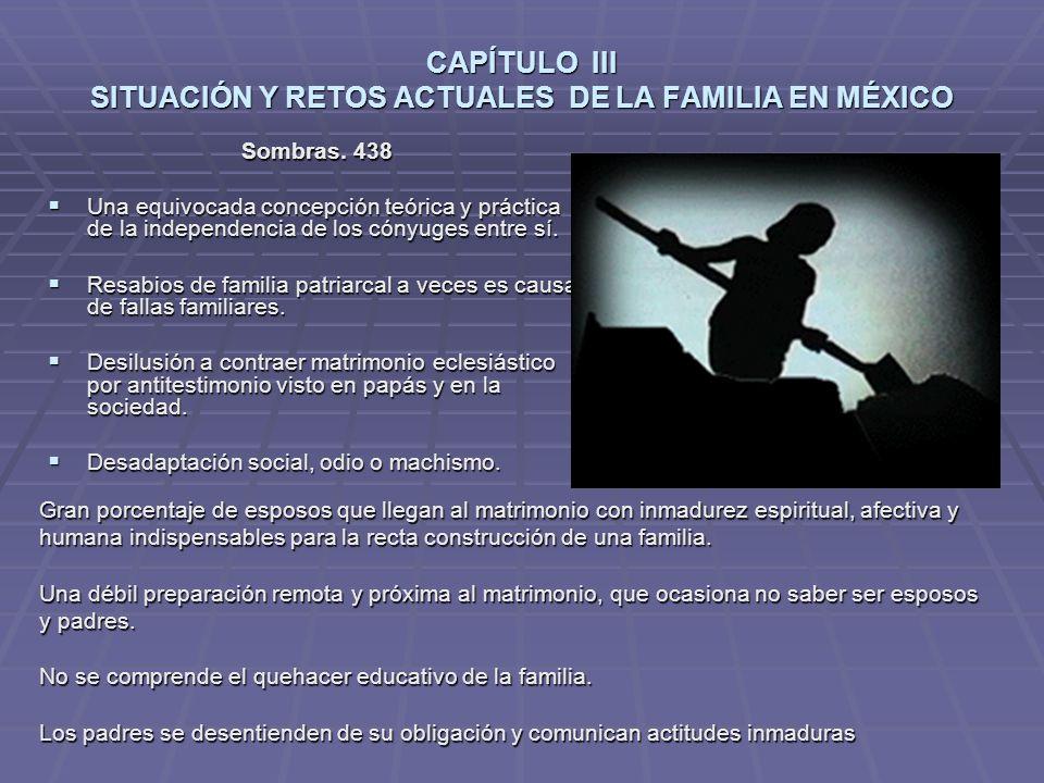 CAPÍTULO III SITUACIÓN Y RETOS ACTUALES DE LA FAMILIA EN MÉXICO Sombras.
