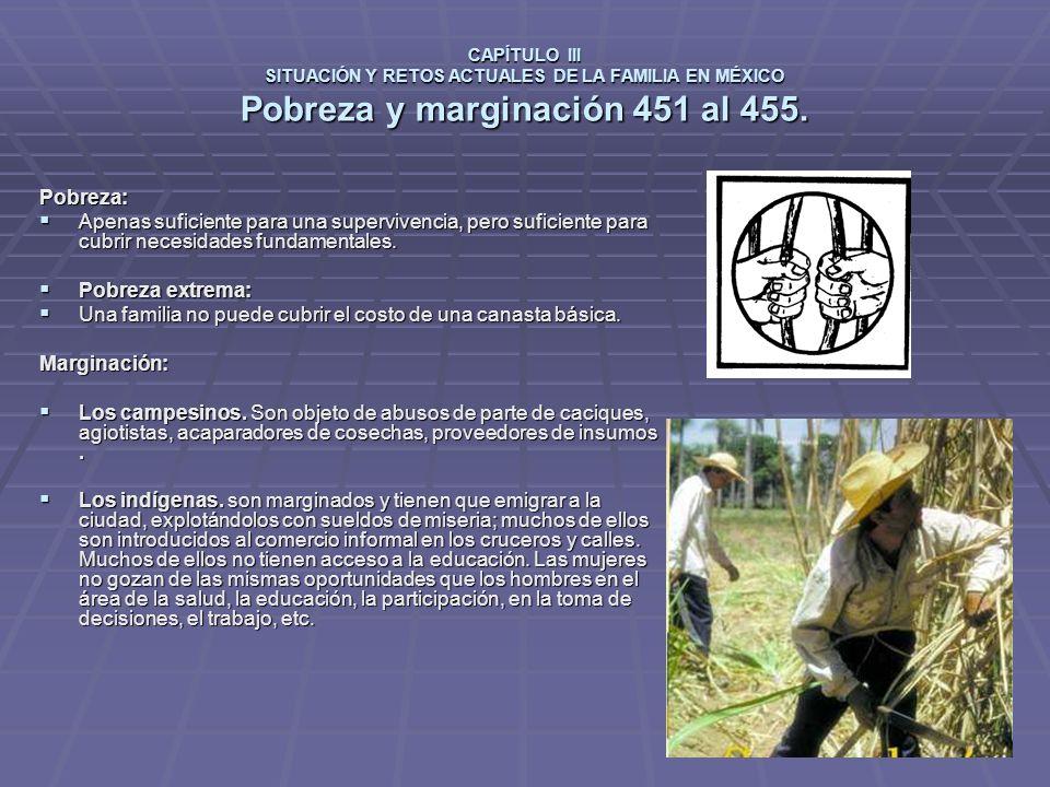 CAPÍTULO III SITUACIÓN Y RETOS ACTUALES DE LA FAMILIA EN MÉXICO Pobreza y marginación 451 al 455.
