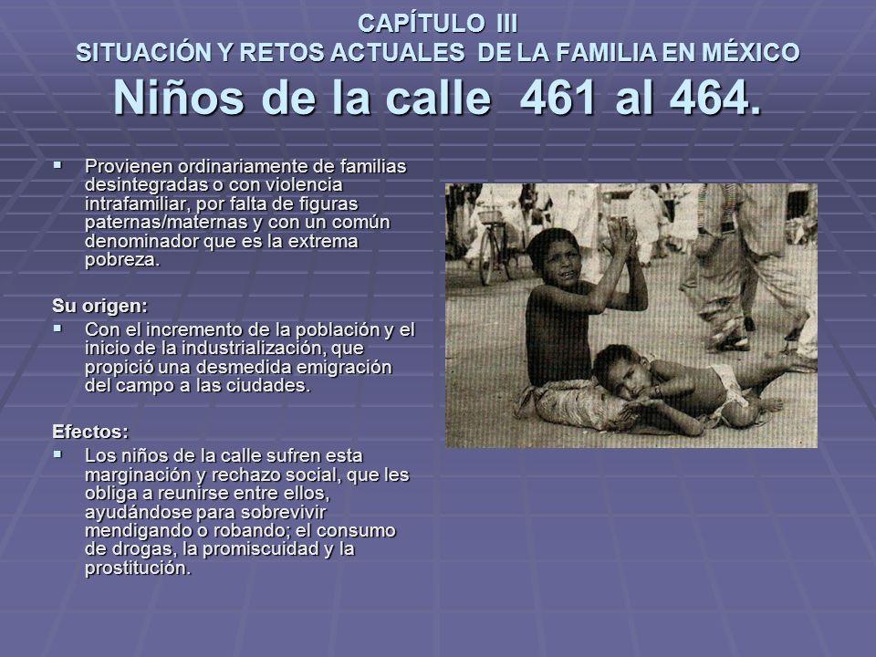 CAPÍTULO III SITUACIÓN Y RETOS ACTUALES DE LA FAMILIA EN MÉXICO Niños de la calle 461 al 464.