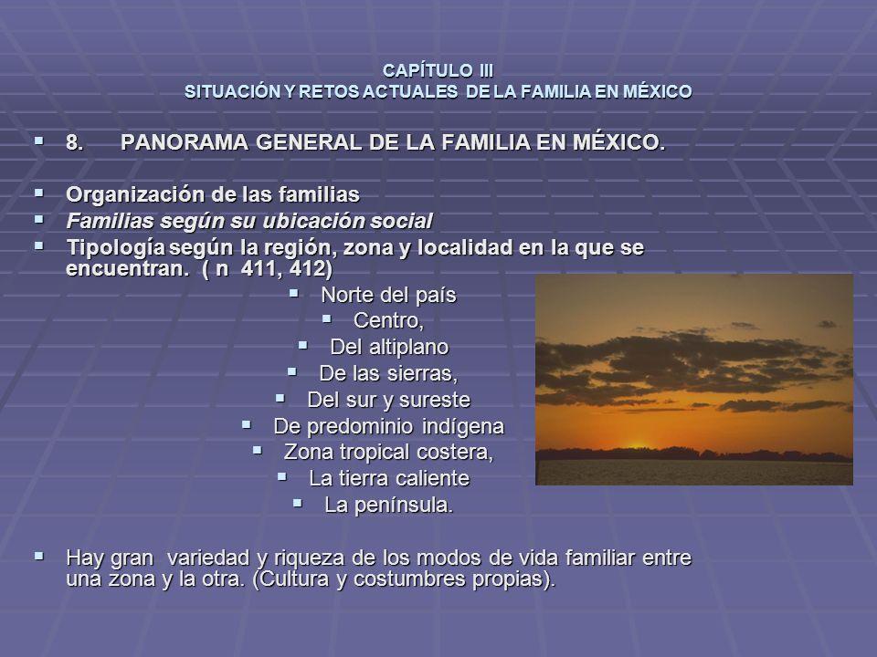 CAPÍTULO III SITUACIÓN Y RETOS ACTUALES DE LA FAMILIA EN MÉXICO 8.PANORAMA GENERAL DE LA FAMILIA EN MÉXICO.