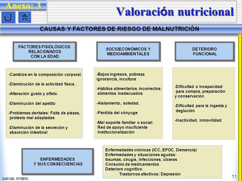 GdTAD; SVMFiC 11 Valoraci ó n nutricional CAUSAS Y FACTORES DE RIESGO DE MALNUTRICIÓN Anexo: 3 FACTORES FISIOLÓGICOS RELACIONADOS CON LA EDAD FACTORES FISIOLÓGICOS RELACIONADOS CON LA EDAD -Cambios en la composición corporal.