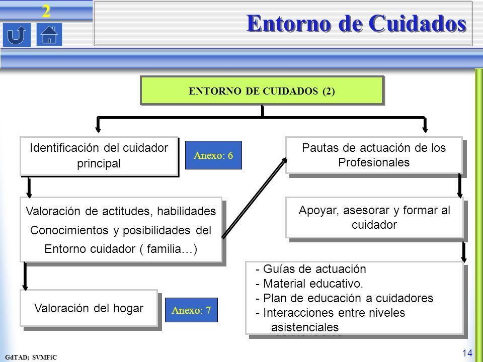 GdTAD; SVMFiC 14 Entorno de Cuidados ENTORNO DE CUIDADOS (2) Pautas de actuación de los Profesionales Pautas de actuación de los Profesionales Anexo: