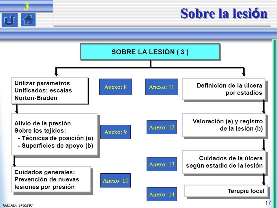 GdTAD; SVMFiC 17 Sobre la lesi ó n SOBRE LA LESIÓN ( 3 ) Anexo: 8 Utilizar parámetros Unificados: escalas Norton-Braden Utilizar parámetros Unificados