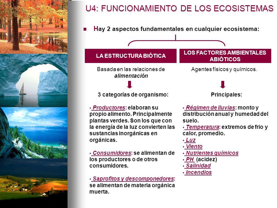 H ay 2 aspectos fundamentales en cualquier ecosistema: LOS FACTORES AMBIENTALES ABIÓTICOS LA ESTRUCTURA BIÓTICA 3 categorías de organismo: Productores: elaboran su propio alimento.