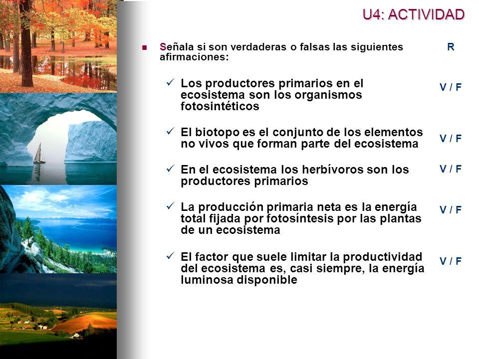 Señala si son verdaderas o falsas las siguientes afirmaciones: Los productores primarios en el ecosistema son los organismos fotosintéticos El biotopo es el conjunto de los elementos no vivos que forman parte del ecosistema En el ecosistema los herbívoros son los productores primarios La producción primaria neta es la energía total fijada por fotosíntesis por las plantas de un ecosistema El factor que suele limitar la productividad del ecosistema es, casi siempre, la energía luminosa disponible U4: ACTIVIDAD R V / F
