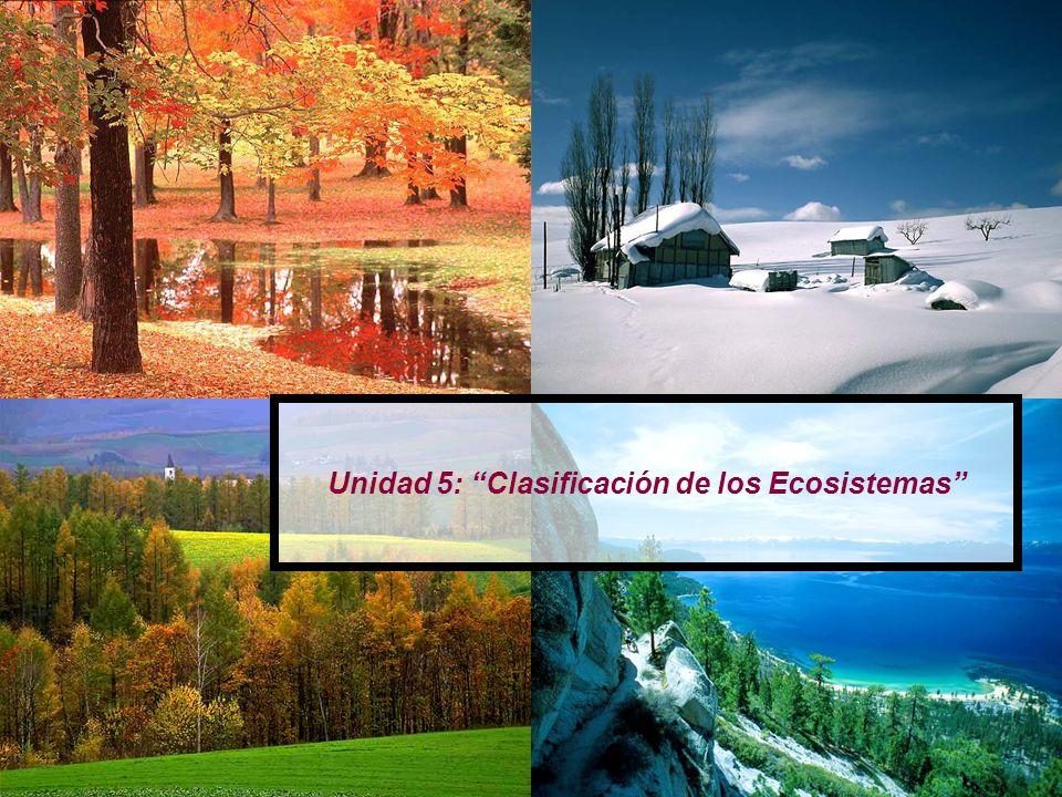 Unidad 5: Clasificación de los Ecosistemas