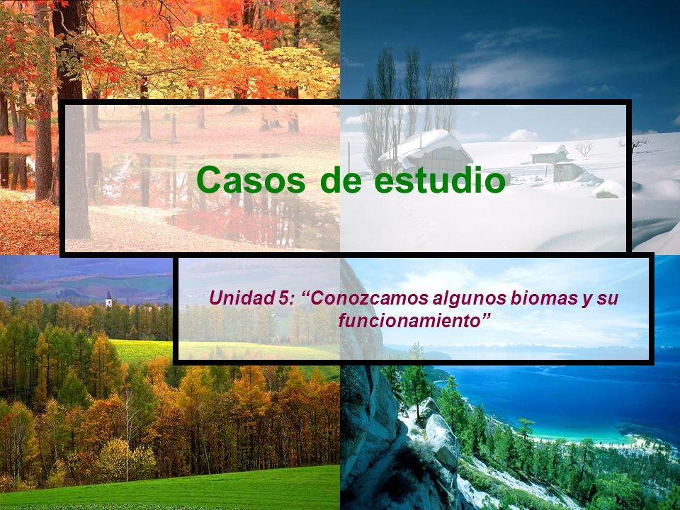 Unidad 5: Conozcamos algunos biomas y su funcionamiento Casos de estudio