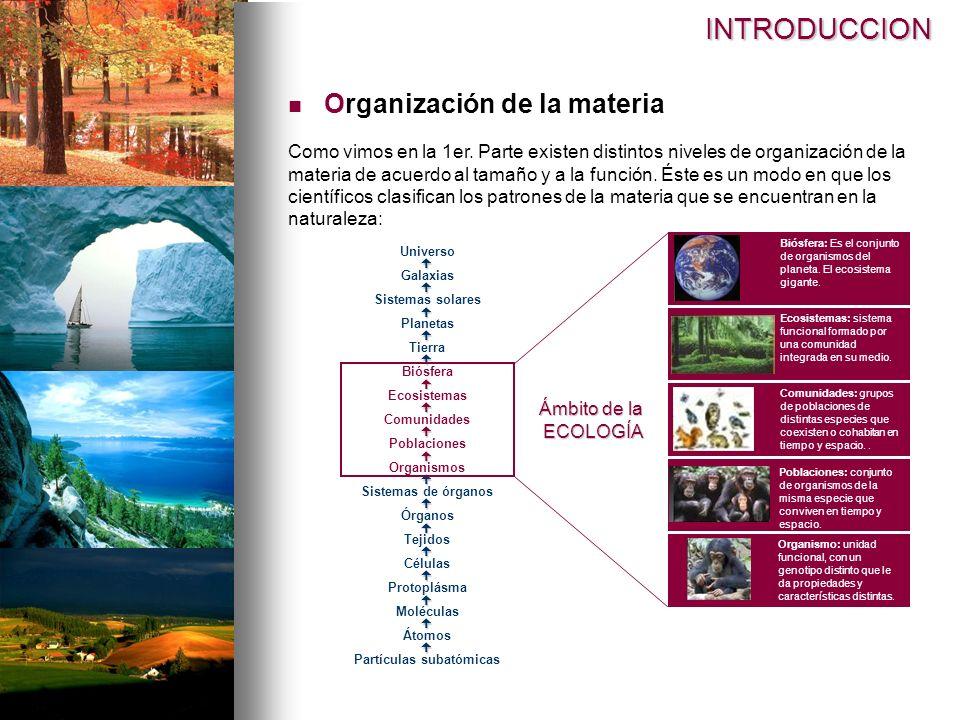 INTRODUCCION Organización de la materia Como vimos en la 1er. Parte existen distintos niveles de organización de la materia de acuerdo al tamaño y a l