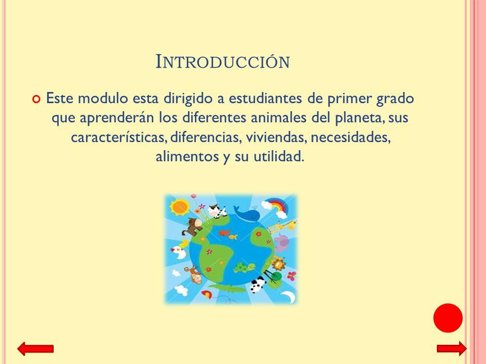 L OS ANIMALES DEL PLANETA Modulo preparado por: Gipsy M. Arroyo 2011