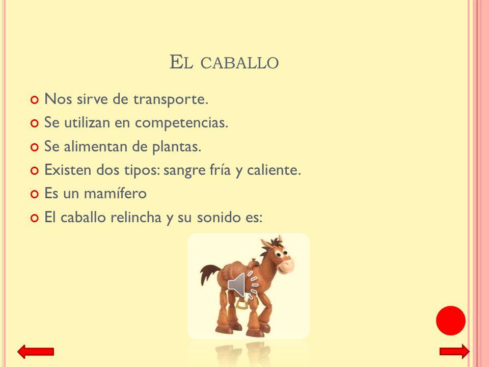 E L PERRO El perro es un mamífero de la familia de los canidos. Comen carne. Nos hacen compañía. Sirven de guardianes. Tienen diferentes razas, tamaño
