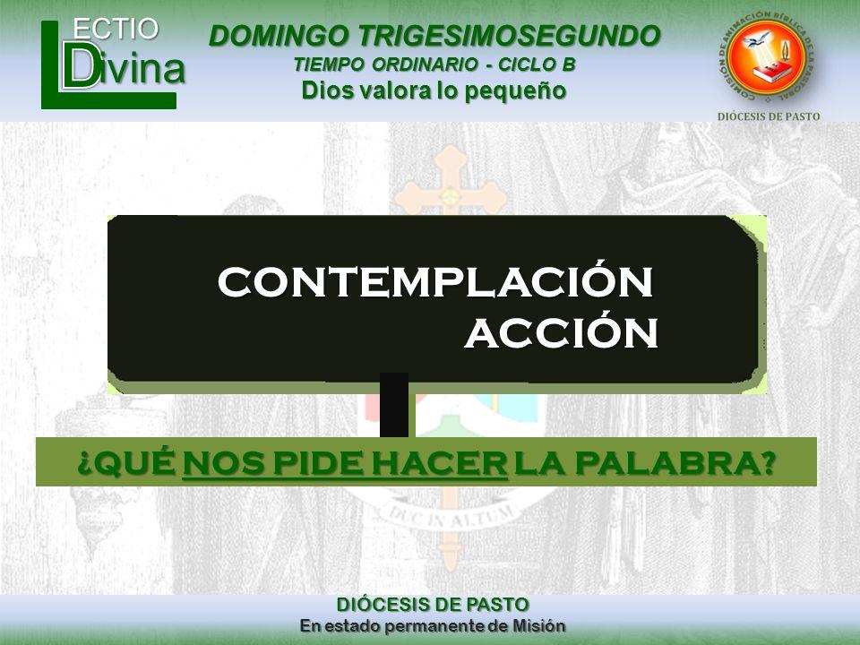 DOMINGO TRIGESIMOSEGUNDO TIEMPO ORDINARIO - CICLO B Dios valora lo pequeño ECTIO DIÓCESIS DE PASTO En estado permanente de Misión ivinaCONTEMPLACIÓN A